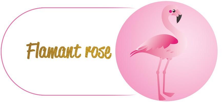 Kit D'Anniversaire Flamant rose